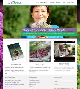 Site internet du magazine : Le Chou Brave