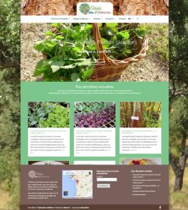Site internet : Oasis des 3 chênes
